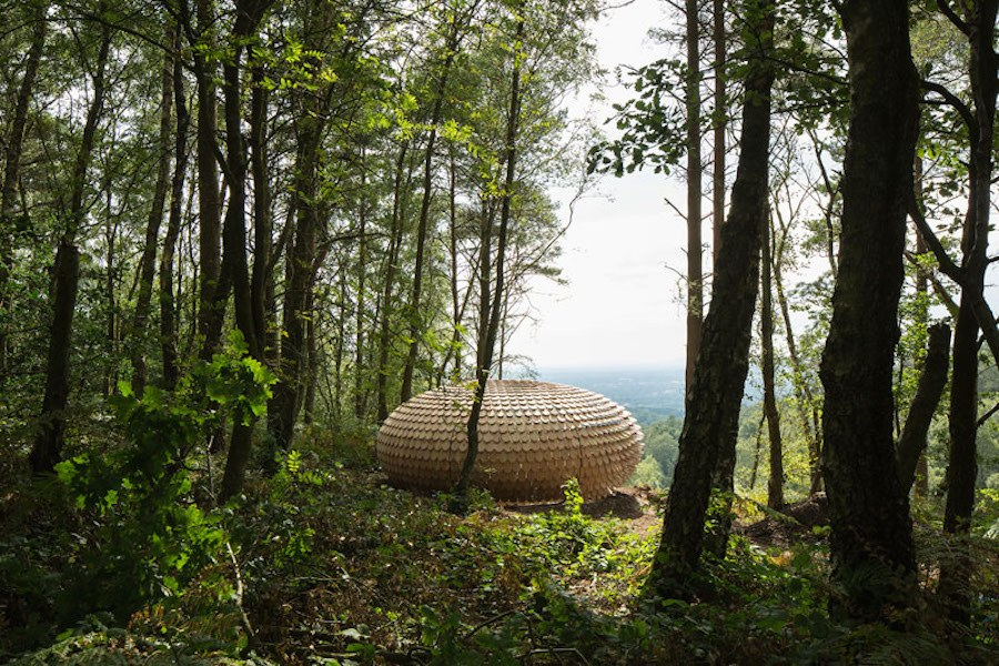 sculptural-cedar-installation-in-the-middle-of-nature-2