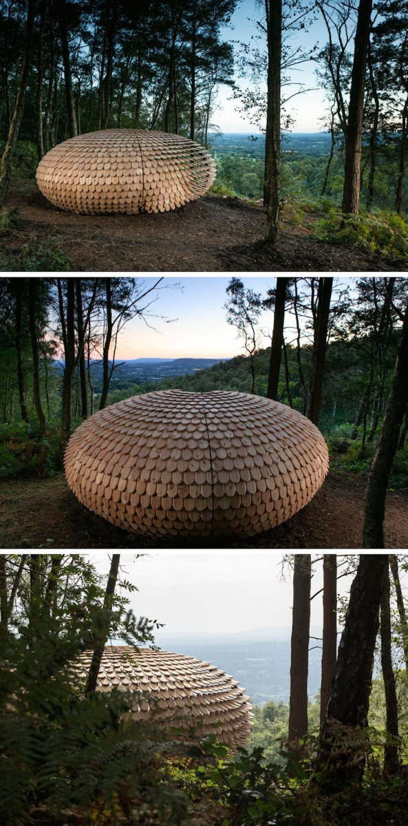 sculptural-cedar-installation-in-the-middle-of-nature-3