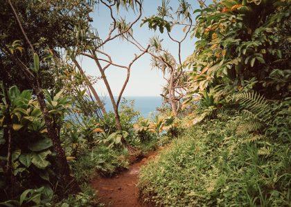Χαβάης