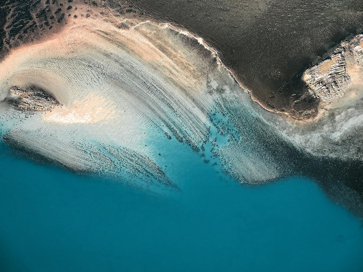κοραλλιογενείς