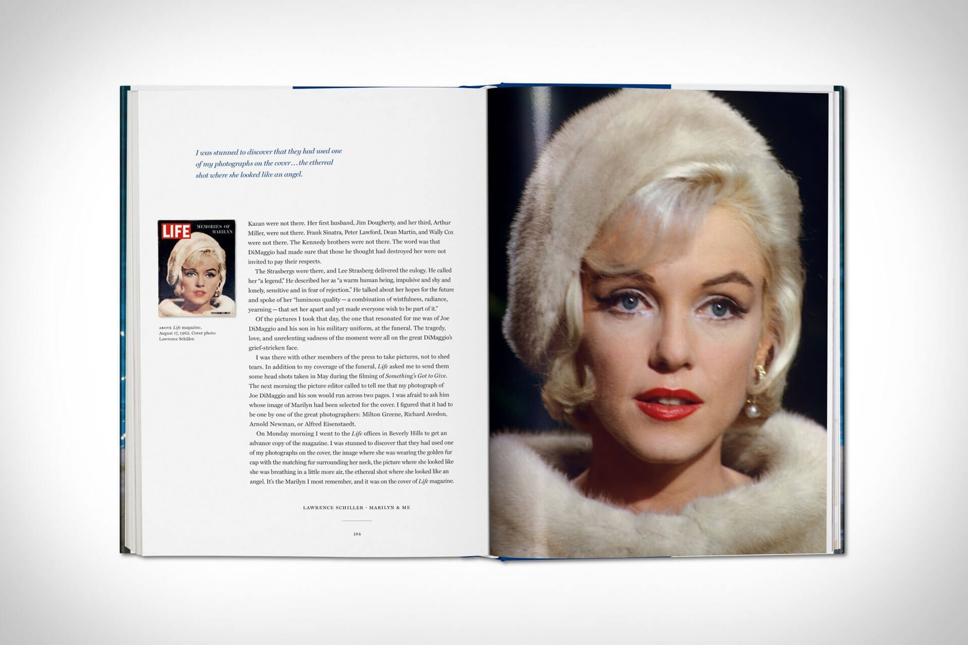 marilyn and me book 6